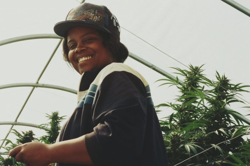 Journey to Licensure: Supernova Woman & Oakland's Newest Dispensary Owner, Amber  Senter